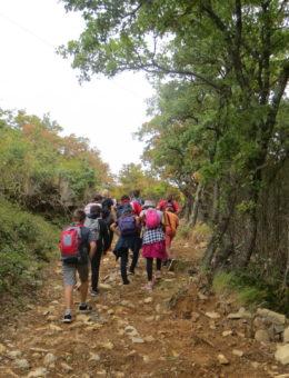 Des randonnées pour fédérer
